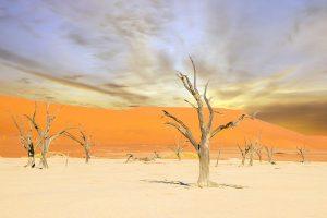 Sossusvflei Deadvlei Namibian Desert