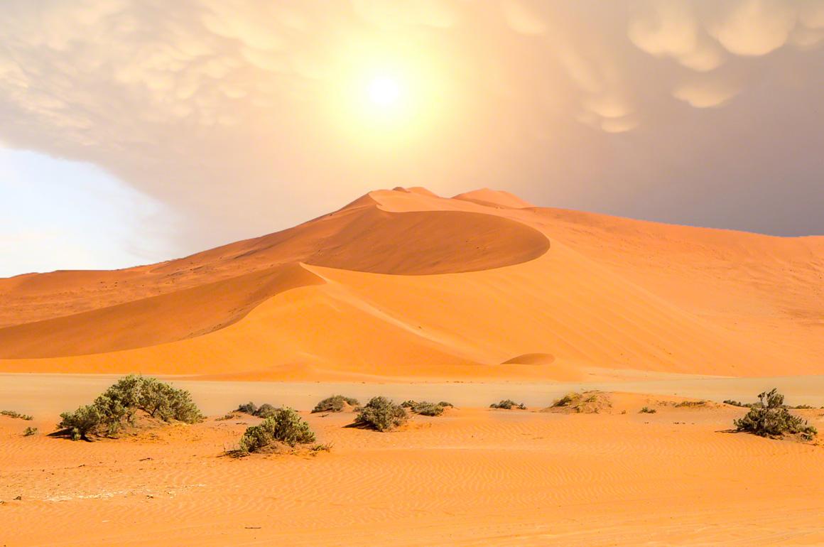 Sossusvflei Namibian Desert